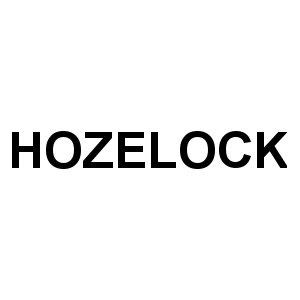 Hozelock Timer